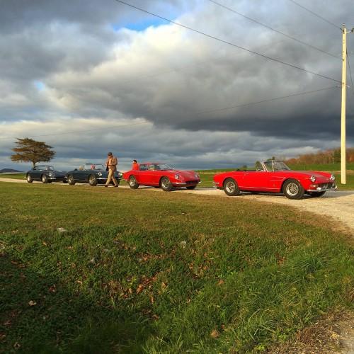 Ferrari 275 and 330's